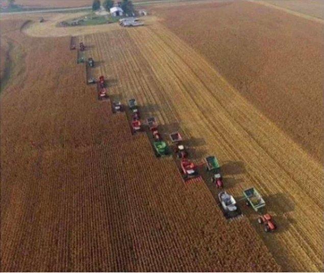 20. Kanser hastası arkadaşları için bir günde bütün ürünlerin hasadını yapan çiftçiler...