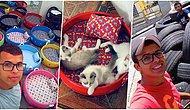 İyi İnsanlar Hâlâ Aramızda! Bulduğu Atık Lastiklerden Kedi ve Köpekler İçin Yatak Yapan Brezilyalı Adam