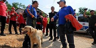 200 Kişilik Ekip 4 Gün Boyunca Aradı: Kayıp Zannedilen Adam Cezaevinde Çıktı