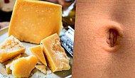 Midemiz Kalmamıştır! Sergi İçin Ünlülerin Göbek Deliğinden Aldıkları Bakteriyle Peynir Yapan Sanatçılar
