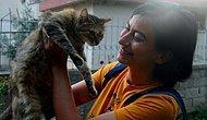 Adana'da Sokak Kedilerini Besleyen Kadına Saldırı: 'Mahalle Kirleniyor, Rahatsız Oluyoruz' Dediler