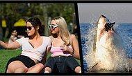 Çağımızın Tutkusu Selfielerin, Köpek Balığı Saldırısından 5 Kat Daha Tehlikeli Olduğunu Biliyor muydunuz?