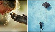 National Geographic Fotoğrafçılarından Bugüne Kadar Çekilmiş Birbirinden Etkileyici Fotoğraflar
