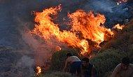 Muğla'da Ormanlar Küle Dönüyor: Bodrum'da Çıkan Dördüncü Yangın Kontrol Altına Alındı