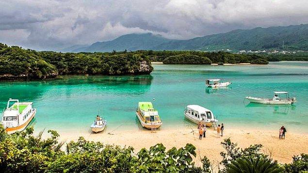 Okinawa diyeti nedir?