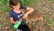 Hayvanlarla Konuşan ve Onlarla Vakit Geçiren Ufaklığın Görüntülerini İzlerken Gözlerinizden Kalpler Fışkıracak