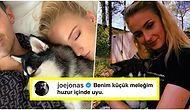 Gözyaşımız Kalmamıştır! Sophie Turner ve Joe Jonas Kaybettikleri Köpeklerinin Anısına Dövme Yaptırdılar