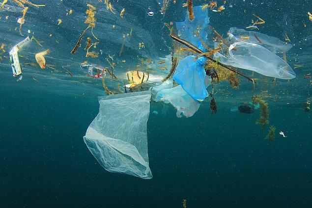 Plastik Kuzey Kutbu'na nasıl ulaşıyor?