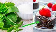 Diyet Yaparken Tatlıdan Vazgeçemeyenlere Müjde! Şeker Yerine Kullanabileceğiniz Stevia Otu Hakkında Bilmeniz Gerekenler