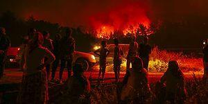 Dağlarında Çiçekler Açardı: Günlerdir Devam Eden Orman Yangını İçin Sosyal Medyadan #izmiryanıyor Paylaşımları
