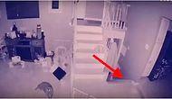 Evlerinin Güvenlik Kamerasında Bir Çocuk ve Onun Evcil Hayvanının Hayaletini Gördüğünü İddia Eden Aile