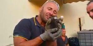 Kanalda Sıkışan Kediyi Kurtardıktan Sonra Gözyaşlarını Tutamayan İtfaiye Memuru!