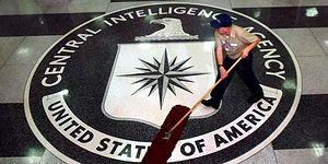 CIA Gizli Casus Ordusunu Açıkladı: Sabotajcı Yunuslar, Fotoğraf Çeken Kuşlar