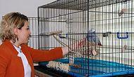 Makam Odasında Hayvanlara Bakan Müdür Yardımcısına Sürgün: 'Böyle Bir Ceza Almaktan Ancak Gurur Duyarım'