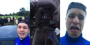 Arabayı İçeriden Kilitleyen Köpeğine Kapıları Açtırmaya Çalışırken Bir Yandan Eğlenen Adam