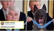 Donald Trump'ın Bağdadi'yi Yakalayan Köpeğe Photoshop ile Madalya Takması Sosyal Medyanın Gündeminde!