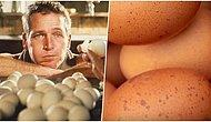 Arkadaşıyla Girdiği Tartışmayı Bitirmek Adına İddiaya Giren ve 41 Yumurta Yiyerek Ölen Adam