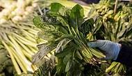 İstanbul Tarım Müdürlüğü'nden 'Ispanak' Açıklaması: 'Analizlerde Herhangi Bir Bulguya Rastlanılmadı'