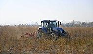Atatürk Orman Çiftliği'nde Üretim Başlıyor: Ankara Büyükşehir Belediyesi Tarafından Kiralanan Arazide Çiftçiye Dağıtılmak Üzere Tohum Üretilecek