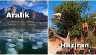 Fantastik Film Kareleri Gibi! Sadece Yılın Belirli Bir Döneminde Görebileceğiniz 12 Doğa Olayı