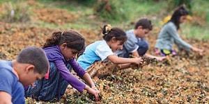20 Kasım Dünya Çocuk Hakları Günü: Peki Türkiye Çocuk Haklarında Ne Durumda?
