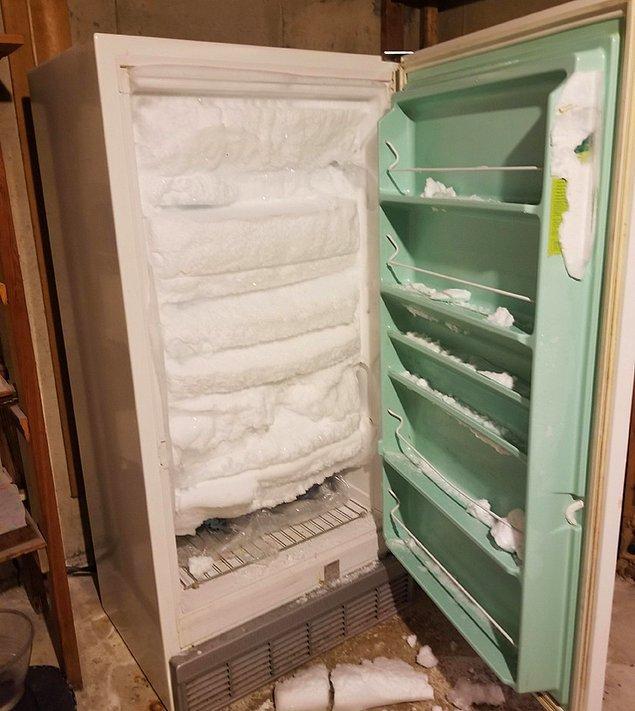 """19. """"Derin dondurucunun kapısını kazayla hafifçe kırdım ve birkaç ay kullanmadım. Taşınmadan birkaç gün önce bununla ödüllendirildim."""""""