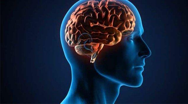 4. Beynin hangi kısmı öğrenme, muhakeme ve duygularını kontrol eder?