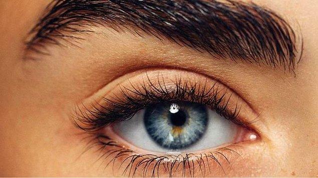 5. İnsan gözünün hangi kısmı ışığı algılar?
