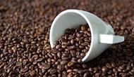Kahve Gurmeleri Buraya: Kahve Hakkında Ne Kadar Bilgilisin?