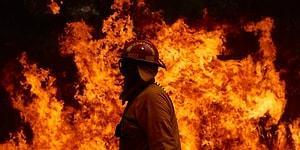 Avustralya'da Alarm: Orman Yangınları Nedeniyle 1 Yıllık Karbondioksitin Yarısı Sadece Birkaç Ayda Salındı
