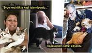 Evde Evcil Hayvan İstemeyen İnsanların Sonrasında Sevgi Yumağına Dönüşmesiyle Ortaya Çıkan 25 Minnoş Görüntü