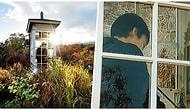 """Son Bir Veda! Japonya'da İnsanların Hayatını Kaybeden Yakınlarıyla Konuşmasını Sağlayan """"Rüzgar Telefonu"""""""