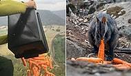 Avustralya'da Orman Yangınlarının Ortasında Mahsur Kalan Hayvanlar İçin Havadan Gıda Yardımı!