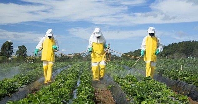 Pestisit nedir?