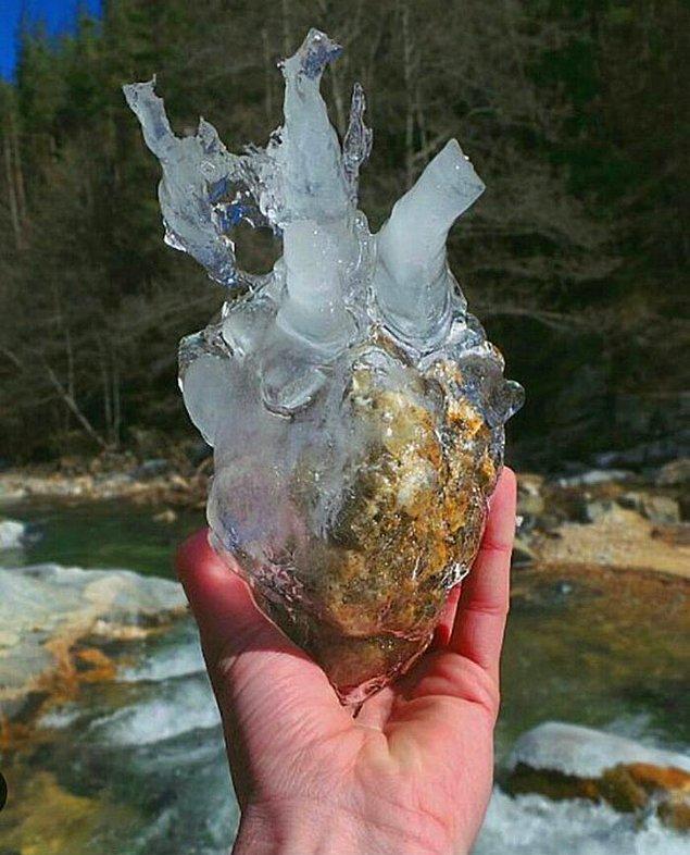 1. Eski sevgilimin kalbini buldum.