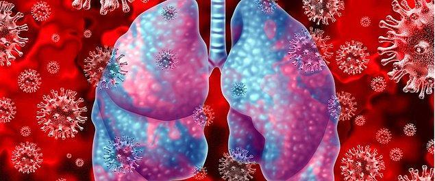 5. ABD'nin Washington eyaletinde bir kişide koronavirüs (2019-nCoV) teşhis edilmesinin ardından ikinci vaka Illionis eyaletindeki Chicago kentinde görüldü.