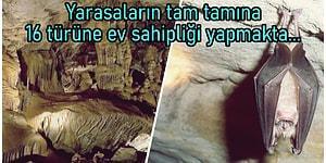 Yer Altı Dünyasından Manzaralarıyla Sizi Mest Etmeye Yetecek de Artacak Harikulade Bir Yer: Dupnisa Mağarası