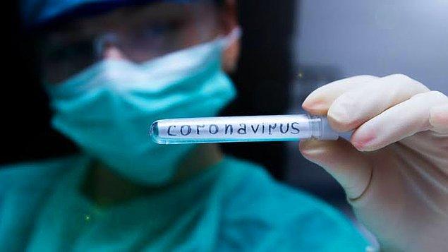 Hatta o safsatalar o kadar büyüdü ki, bir Türk doktorun ABD'de Korona virüsünün aşısını geliştirdiği iddiası bile öne sürüldü.