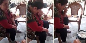 Çocukları İçin Balık Pişirirken Gözyaşlarına Hakim Olamayan Vejetaryen Anne
