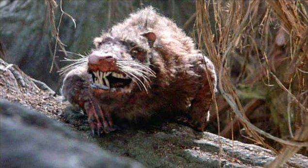 5. 'Rodents of Unusual Size'