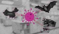 Nobel Ödüllü Fransız Virolog da 'Laboratuvarda Üretildi' Dedi: ABD ve Çin Arasında 'Koronavirüsü Kim Çıkardı' Kavgası