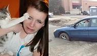 Gördüğünüz Anda Hem Güldürecek Hem de Suçlu Hissettirecek 18 Trajikomik Fotoğraf
