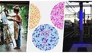 Renklerin Hissettiklerimiz, Düşündüklerimiz ve Tercihlerimiz Üzerindeki 15 İlginç Etkisi