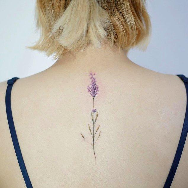 25. Ve son olarak, bu çiçek görseli: