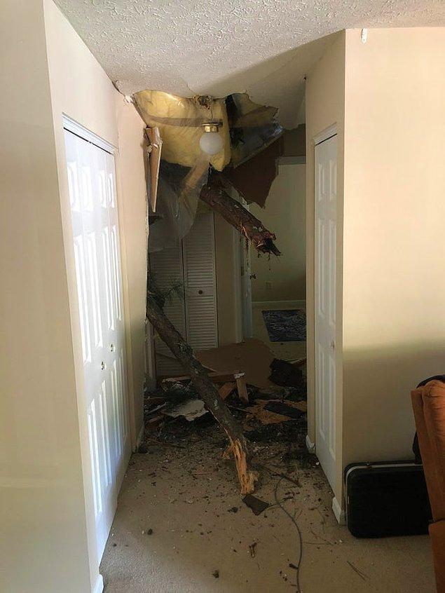"""3. """"Evime ağaç düştü desem..."""""""