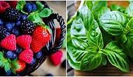 Aldığınız Taze Sebze ve Meyveleri Bozulmadan Son Zerresine Kadar Kullanmanın 10 Püf Noktası