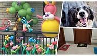Her Gününüzü Özel Yapacak Derecede Enteresan Komşuların Ana Karakter Olduğu 14 Çılgın Hikaye
