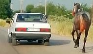 Osmaniye'de Otomobile Bağladıkları Atı Metrelerce Koşturdular