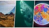 Hem Farklı Bir Bakış Açısı Kazanmanızı Hem de Dünyayı Daha İyi Anlamanızı Sağlayacak 20 Fotoğraf