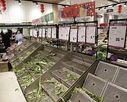 Gıda Krizi İnsanlığı Tehdit Ediyor.